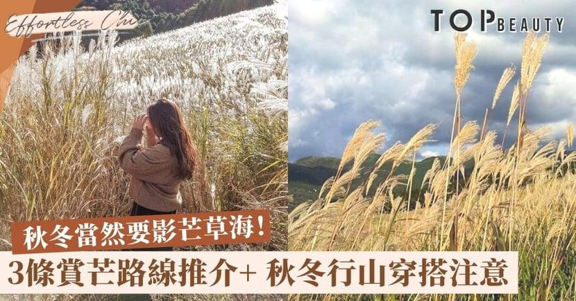 【行山賞芒草】3條「芒草海」行山路線推介 山系女孩的秋冬穿搭注意