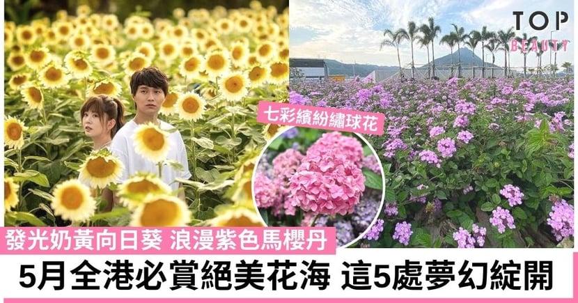 【香港好去處2021】夏日賞花人氣熱點 隱世花海令你置身外國一樣